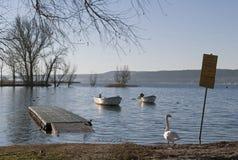 Λίμνη Maggiore, Ιταλία Στοκ φωτογραφία με δικαίωμα ελεύθερης χρήσης