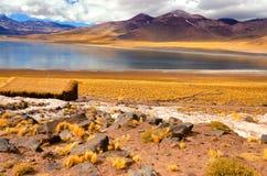 Λίμνη Miniques στη Χιλή στοκ εικόνα με δικαίωμα ελεύθερης χρήσης