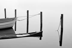 λίμνη misty Στοκ Εικόνα