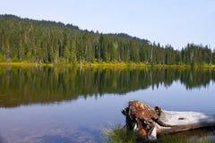 Λίμνη Mowich στο πολιτεία της Washington Στοκ Εικόνες