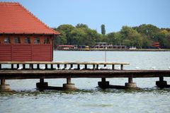 Λίμνη Palic Subotica Σερβία Στοκ φωτογραφία με δικαίωμα ελεύθερης χρήσης