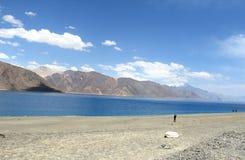 Λίμνη Pangong. Στοκ Φωτογραφίες