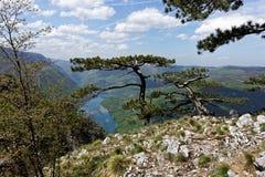 Λίμνη Perucac, άποψη Banjska Stena, βουνό Tara, δυτική Σερβία στοκ εικόνα