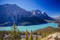 Λίμνη Peyto, εθνικό πάρκο Banff, δύσκολα βουνά, Αλμπέρτα, Canad Στοκ Φωτογραφία