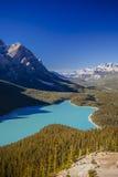 Λίμνη Peyto, εθνικό πάρκο Banff, δύσκολα βουνά, Αλμπέρτα, Canad Στοκ φωτογραφία με δικαίωμα ελεύθερης χρήσης