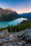 Λίμνη Peyto στο εθνικό πάρκο Banff, Αλμπέρτα στην ανατολή στοκ εικόνες
