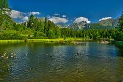 Λίμνη pleso Strbske Nove Στοκ φωτογραφίες με δικαίωμα ελεύθερης χρήσης