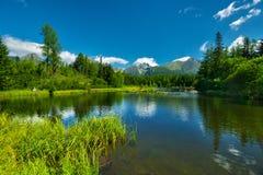Λίμνη pleso Strbske Nove Στοκ εικόνα με δικαίωμα ελεύθερης χρήσης