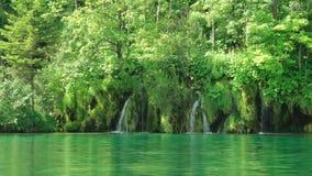 Λίμνη Plitvice και δασικοί καταρράκτες απόθεμα βίντεο