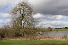 Λίμνη Seaswood στοκ εικόνες με δικαίωμα ελεύθερης χρήσης