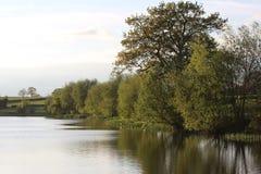 Λίμνη Seaswood Στοκ φωτογραφία με δικαίωμα ελεύθερης χρήσης