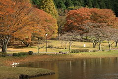 Λίμνη Shidaka, νομαρχιακό διαμέρισμα Ιαπωνία του Oita Στοκ Φωτογραφίες