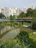 Λίμνη Sua πόνων σε Bukit Panjang, Σιγκαπούρη Στοκ Φωτογραφία
