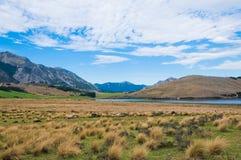 Λίμνη Sumner, Καντέρμπουρυ, Νέα Ζηλανδία στοκ εικόνα με δικαίωμα ελεύθερης χρήσης