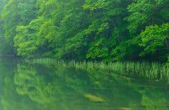 Λίμνη Tsutanuma σε Aomori, Ιαπωνία Στοκ Εικόνες