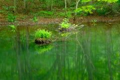Λίμνη Tsutanuma σε Aomori, Ιαπωνία Στοκ φωτογραφίες με δικαίωμα ελεύθερης χρήσης