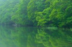 Λίμνη Tsutanuma σε Aomori, Ιαπωνία Στοκ εικόνα με δικαίωμα ελεύθερης χρήσης