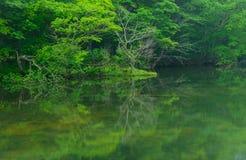 Λίμνη Tsutanuma σε Aomori, Ιαπωνία Στοκ Φωτογραφίες