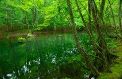 Λίμνη Tsutanuma σε Aomori, Ιαπωνία Στοκ εικόνες με δικαίωμα ελεύθερης χρήσης