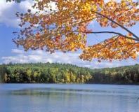 Λίμνη Walden, Μασαχουσέτη Στοκ Εικόνα