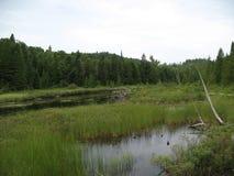 Λίμνη Wapizagonke Στοκ φωτογραφία με δικαίωμα ελεύθερης χρήσης