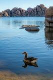 Λίμνη Watson σε Prescott Αριζόνα Στοκ Εικόνες