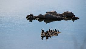 Λίμνη Watson, Prescott, Αριζόνα Στοκ φωτογραφίες με δικαίωμα ελεύθερης χρήσης