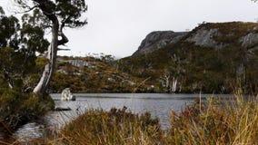Λίμνη Wombat απόθεμα βίντεο