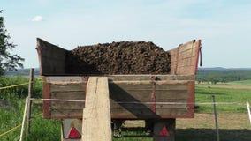 Λίπασμα αλόγων στο βαγόνι εμπορευμάτων σε ένα αγρόκτημα αλόγων απόθεμα βίντεο