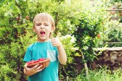 Λαβή μικρών παιδιών ένα μικρό καλάθι των ώριμων σμέουρων υπαίθριων Στοκ φωτογραφίες με δικαίωμα ελεύθερης χρήσης