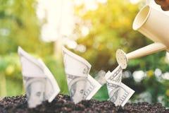 Λαβή χεριών που ποτίζει φυτεύοντας το λογαριασμό δολαρίων στο χώμα Στοκ Φωτογραφίες