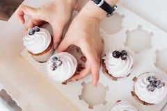 Λαβή χεριών cupcake με το βατόμουρο Στοκ φωτογραφία με δικαίωμα ελεύθερης χρήσης