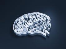 Λαβύρινθος εγκεφάλου Στοκ εικόνες με δικαίωμα ελεύθερης χρήσης