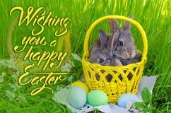 Λαγουδάκια Πάσχας στο καλάθι Πάσχας με χρωματισμένα τα Πάσχα αυγά Στοκ Φωτογραφία