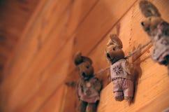 Λαγουδάκια στο σχοινί στοκ φωτογραφίες