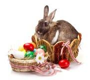 Λαγουδάκι και ζωηρόχρωμα αυγά στοκ φωτογραφία με δικαίωμα ελεύθερης χρήσης