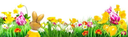 Λαγουδάκι Πάσχας, λιβάδι λουλουδιών, που απομονώνεται, έμβλημα Στοκ Φωτογραφίες