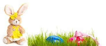 Λαγουδάκι Πάσχας, λιβάδι Πάσχας, αυγά Πάσχας Στοκ Φωτογραφία