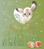 Λαγουδάκι Πάσχας, κάρτα άνοιξη σε πράσινο Στοκ Εικόνα