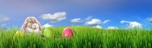 Λαγουδάκι Πάσχας και αυγά Πάσχας στην πράσινη χλόη Στοκ Φωτογραφίες