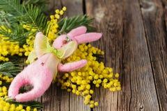 Λαγουδάκι Πάσχας και κίτρινο mimosa Στοκ Εικόνες