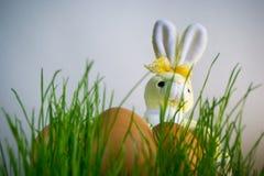 Λαγουδάκι Πάσχας με τα αυγά αναμμένα από το φως του ήλιου Στοκ εικόνα με δικαίωμα ελεύθερης χρήσης