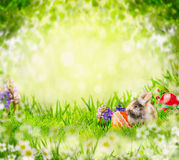 Λαγουδάκι Πάσχας με τα αυγά και τα λουλούδια στη χλόη πέρα από τα πράσινα φύλλα δέντρων κήπων Στοκ φωτογραφία με δικαίωμα ελεύθερης χρήσης