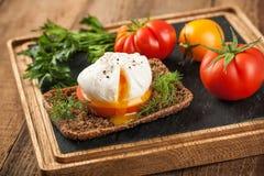 Λαθραίο αυγό με τις φρέσκες ντομάτες στοκ εικόνα