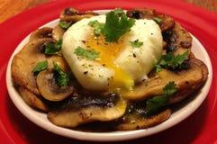 Λαθραίο αυγό στα μανιτάρια Sauteed στοκ φωτογραφία με δικαίωμα ελεύθερης χρήσης