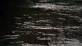 Λακκούβες βροχής σε ένα πεζοδρόμιο φιλμ μικρού μήκους