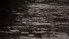Λακκούβες βροχής σε ένα πεζοδρόμιο απόθεμα βίντεο