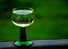 Λαμπιρίζοντας κρασί στο γυαλί με ένα πράσινο πόδι Στοκ φωτογραφία με δικαίωμα ελεύθερης χρήσης