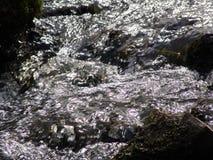 Λαμπιρίζοντας νερό Στοκ Εικόνα