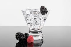 Λαμπιρίζοντας ποτό σε ένα martini γυαλί με τα βατόμουρα και το RA Στοκ Εικόνες